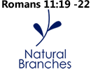 Natural Branches